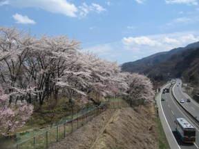 Nishiyamakouen