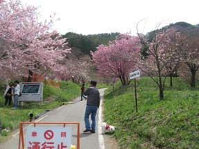 Hananooka