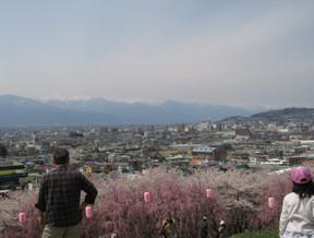Koubouyama3
