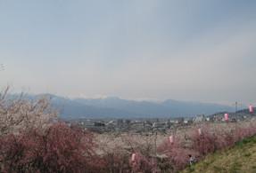 Koubouyama4
